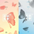 BTS - 4TH MINI ALBUM -2 VERS.-