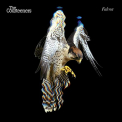 Courteeners - FALCON