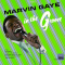 Gaye, Marvin - IN THE GROOVE -LTD-