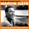 Gaye, Marvin - LOVE FOR SALE: THE..