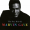 Gaye, Marvin - SHM-VERY BEST OF -LTD-