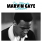 Gaye, Marvin - ULTIMATE COLLECTION