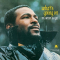 Gaye, Marvin - WHAT'S GOING ON -REMAST-