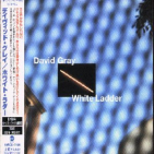 Gray, David - WHITE LADDER + 1