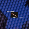 Gray, David - WHITE LADDER (DELUXE EDITION)