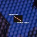 Gray, David - WHITE LADDER (20TH ANNIVERSARY EDITION)