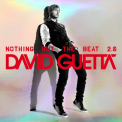 Guetta, David - NOTHING BUT THE.. -LTD-