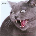 James - Morning After the Night Before