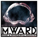 M WARD - WHAT A WONDERFUL INDUSTRY