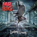 Mr Big - DEFYING GRAVITY -BOX SET-