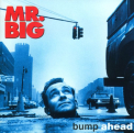 Mr Big - SHM-BUMP AHEAD