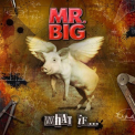 Mr Big - WHAT IF (W/DVD) (ASIA) (NTR0)