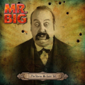 Mr Big - STORIES WE COULD TELL (JPN) (SHM)