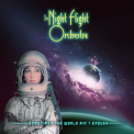 NIGHT FLIGHT ORCHESTRA - SOMETIMES THE AIN'T ENOUGH (PICTURE DISC)