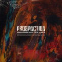 PROSPECTIVE - ALL WE HAVE