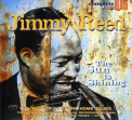 Reed, Jimmy - SUN IS SHINING (W/BOOK) (RMST) (DIG)