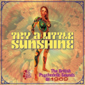 V/A - TRY A LITTLE SUNSHINE